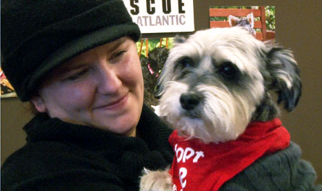 Rescue dogs in need of a loving home meet their potential owners at the fifth annual Cupids and Canines Adopt-a-thon event.