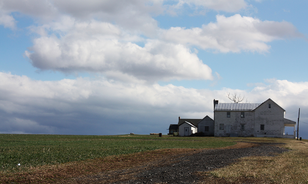 Farms are found immediately north of the city limits of Frederick, like this one on Route 15 just a few miles outside of the city. (Photo by J.F. Meils/Capital News Service.)